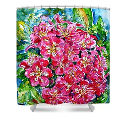 Hawthorn Blossom Shower Curtain by Zaira Dzhaubaeva