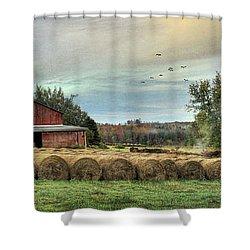 Hay Bales Shower Curtain by Lori Deiter
