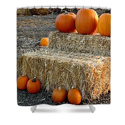 Hay Steps Shower Curtain