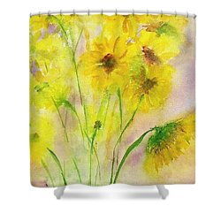 Hazy Summer Shower Curtain