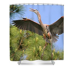 Hb In The Pines Shower Curtain by Deborah Benoit