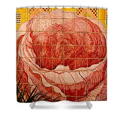 Hdr Tiled Flowers 02 Shower Curtain