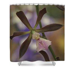 He Pua Ke Aloha - The Flower Of Love - Orchidea Tropicale Shower Curtain by Sharon Mau