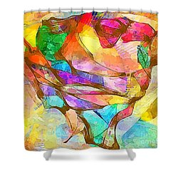 Head  0371 Marucii Shower Curtain