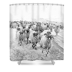 Heading For Home Shower Curtain