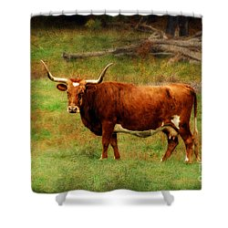 Heading For The Barn Shower Curtain by Lois Bryan