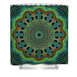 Healing Mandala 19 Shower Curtain by Bell And Todd