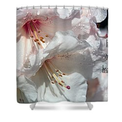 Shower Curtain featuring the photograph Healing Power by Jean OKeeffe Macro Abundance Art