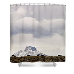 Heart Mountain Horses Shower Curtain