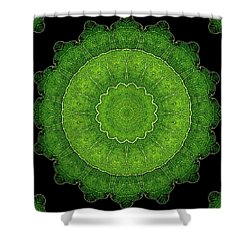 Heart Of Poplar Shower Curtain