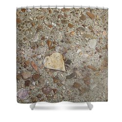 Shower Curtain featuring the photograph Heart Of Stone by Fortunate Findings Shirley Dickerson