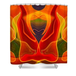 Heart Shaped Box Shower Curtain by Omaste Witkowski