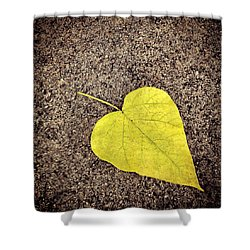 Heart Shaped Leaf On Pavement Shower Curtain