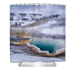 Heart Spring Shower Curtain by Priscilla Burgers
