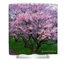 Shower Curtain featuring the painting Heartfelt Cherry Blossoms by Bruce Nutting