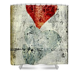 Hearts 1 Shower Curtain by Edward Fielding