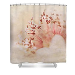 Hearts And Flowers Shower Curtain by A New Focus Photography