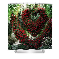 Shower Curtain featuring the photograph Hearts And Flowers by Jennifer Wheatley Wolf