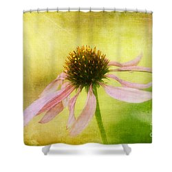 Heart's Desire Shower Curtain by Lois Bryan