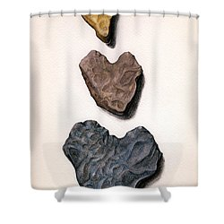 Shower Curtain featuring the painting Hearts Rock by Janice Dunbar