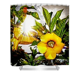 Heat Of The Day Shower Curtain by Stuart Harrison