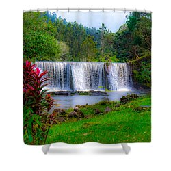 Heaven In The Woods Shower Curtain