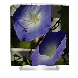 Heavenly Blue Morning Glory Shower Curtain