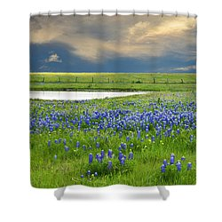 Heavenly Blues Shower Curtain