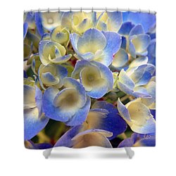 Heavenly Blues Shower Curtain by RC deWinter