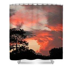 Heavenly Bridge Shower Curtain