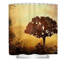 Heavenly Dawn Shower Curtain by Bedros Awak