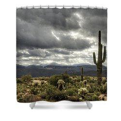 Heavenly Desert Skies  Shower Curtain