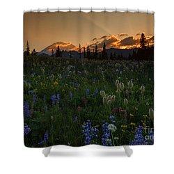 Heavenly Garden Shower Curtain by Mike  Dawson