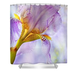 Heavenly Iris 2 Shower Curtain by Theresa Tahara