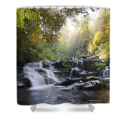 Heaven's Light Shower Curtain by Debra and Dave Vanderlaan