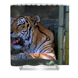 Heavy Breathing Shower Curtain by Skip Willits