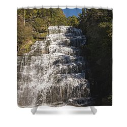 Hector Falls Shower Curtain by William Norton