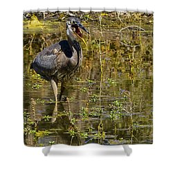 Shower Curtain featuring the photograph Heimlich Please by Gary Holmes