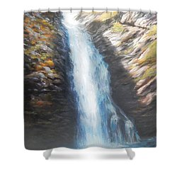 Hell Roaring Falls Shower Curtain