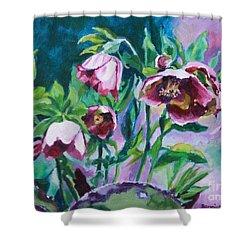 Hellebore Flowers Shower Curtain by Jan Bennicoff