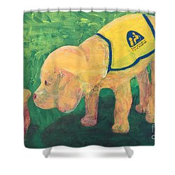 Shower Curtain featuring the painting Hello - Cci Puppy Series by Donald J Ryker III