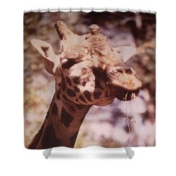 Velvety Giraffe Shower Curtain by Belinda Lee