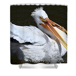 Hello My Ragtime Gal Shower Curtain by Maria Urso