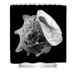 Helmet Shell Shower Curtain