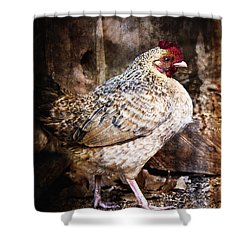 Henny Penny Happy Hen Shower Curtain by Lee Craig