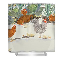Hens In The Vegetable Patch Shower Curtain by Linda Benton
