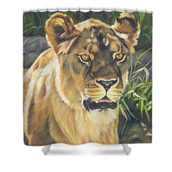 Her - Lioness Shower Curtain