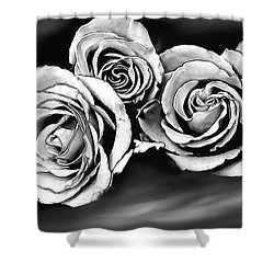 Her Roses Shower Curtain