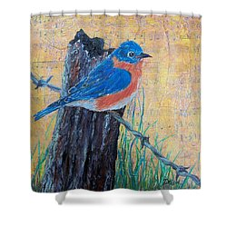 Her Song Shower Curtain by Susan DeLain