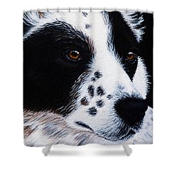 Herding Dog Shower Curtain